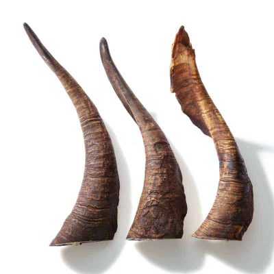 Goat-Horn-Dog-Treats-Plain