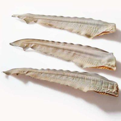 Shark-Tails-Dog-Treats-600×600