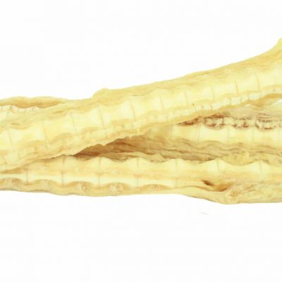 Shark_Cartilage_9343647000134__17579.1453095949.1280.1280
