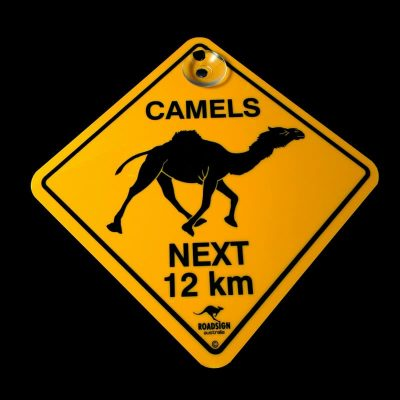 tusam-Australian Made Souvenir Roadsign Car Window Suction Swing Sign Camel 1_tn