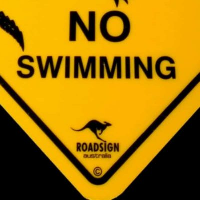 tusam-Australian Made Souvenir Roadsign Car Window Suction Swing Sign Crocodile 2_tn