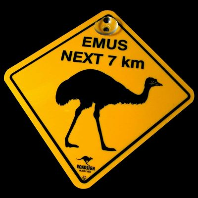 tusam-Australian Made Souvenir Roadsign Car Window Suction Swing Sign Emus 1_tn