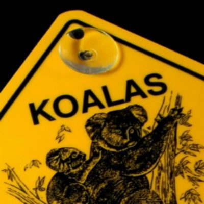 tusam-Australian Made Souvenir Roadsign Car Window Suction Swing Sign Koala Tree 2