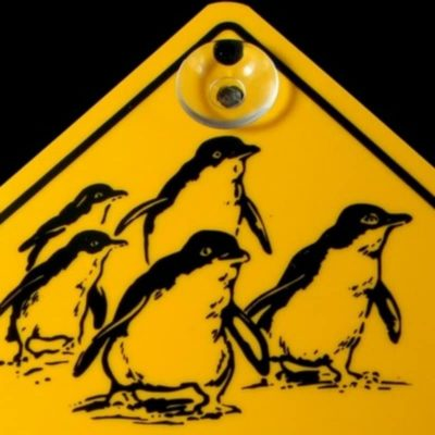 tusam-Australian Made Souvenir Roadsign Car Window Suction Swing Sign Penguin 2_tn