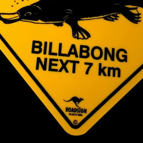 tusam-Australian Made Souvenir Roadsign Car Window Suction Swing Sign Platypus 3_tn